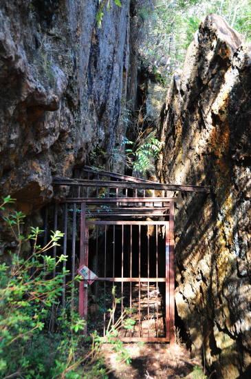 0324紀州鉱山&いなか (16).JPG