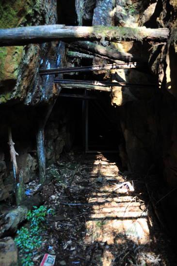 0324紀州鉱山&いなか (17).JPG