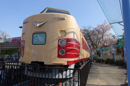 0331花見 (3).JPG