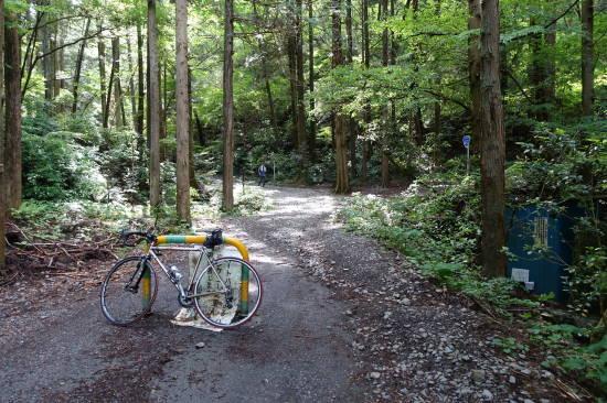 0514サイクリング (13).JPG