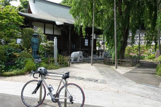 0514サイクリング (17).JPG