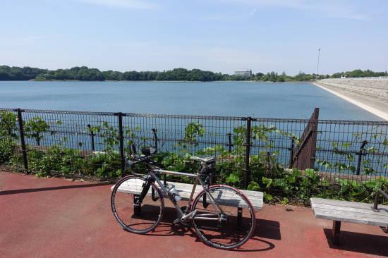 0522多摩湖 (16).JPG