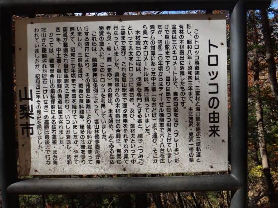 1107西沢渓谷 (64).JPG