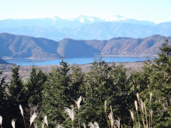 1121本栖湖 (12).JPG