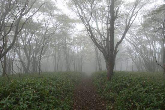 arahuneyama (12).JPG