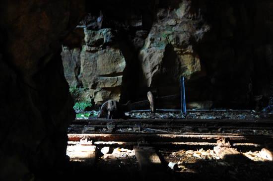 0324紀州鉱山&いなか (21).JPG