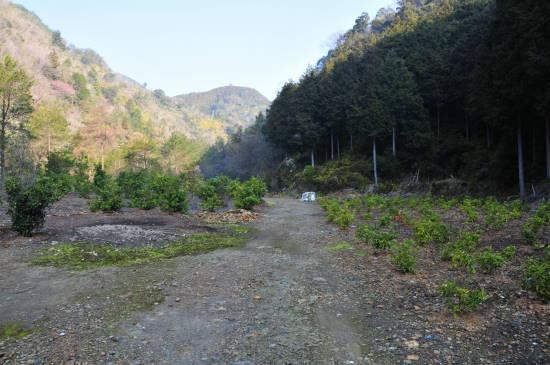 0324紀州鉱山&いなか (7).JPG