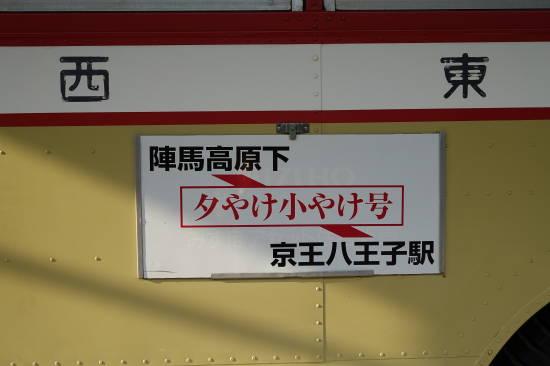 0612ほたる (11).JPG