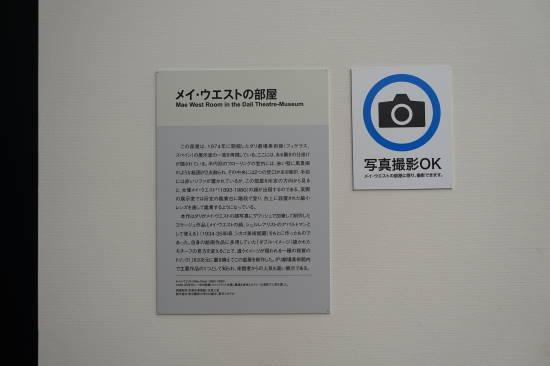 ダリ (1).JPG
