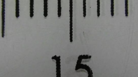 IMGP0042.JPG