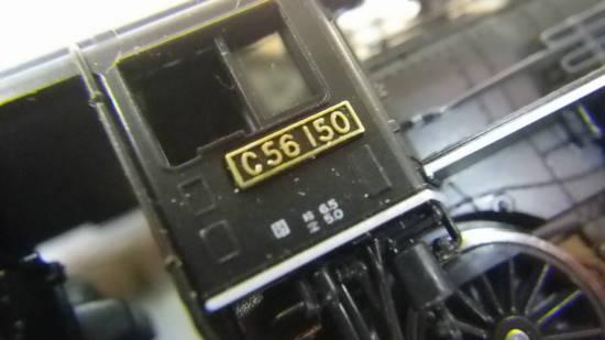IMGP4657.JPG